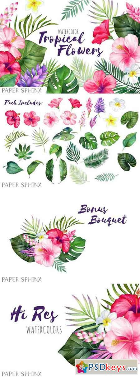 Watercolor Tropical Flowers Clipart 2204999