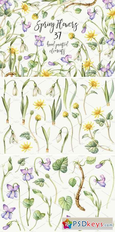 Watercolor Spring flowers. Easter 2227497