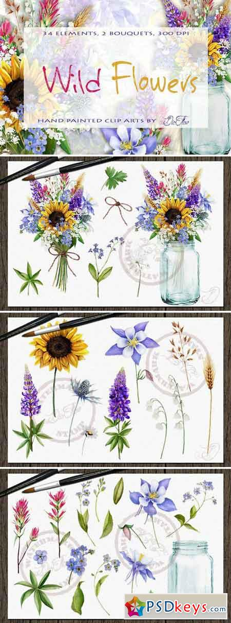 Wild Flowers Watercolor Clip Art 2203176