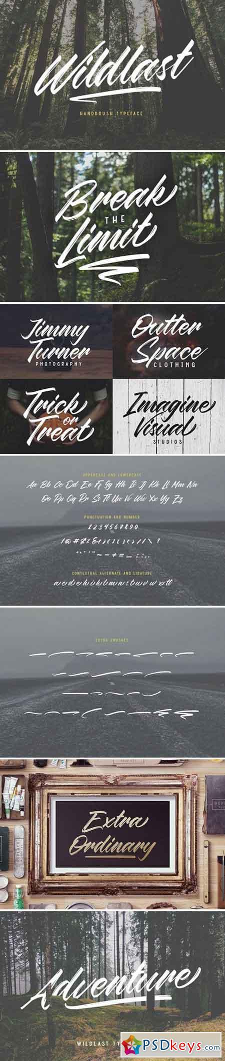 Wildlast Handbrush Typeface 2232902