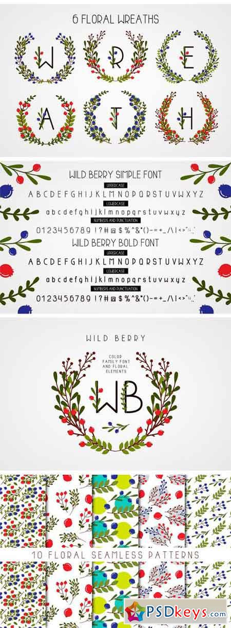 Wild Berry - Color Family Font 2272444