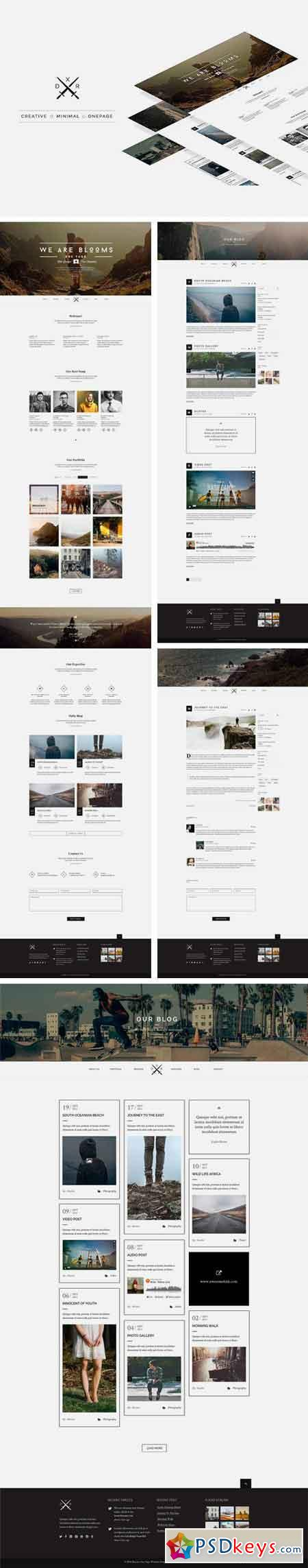 Blooms One Page Psd Web Template Free Download Photoshop - Web template torrent