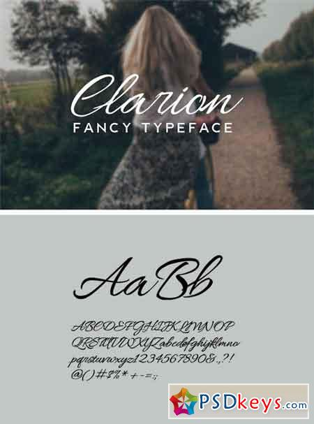 CLARION - Fancy Handwriting Typeface 767208