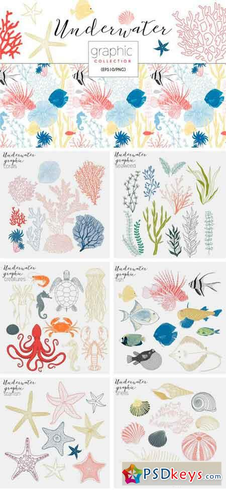 Underwater Graphic Collection 2269928
