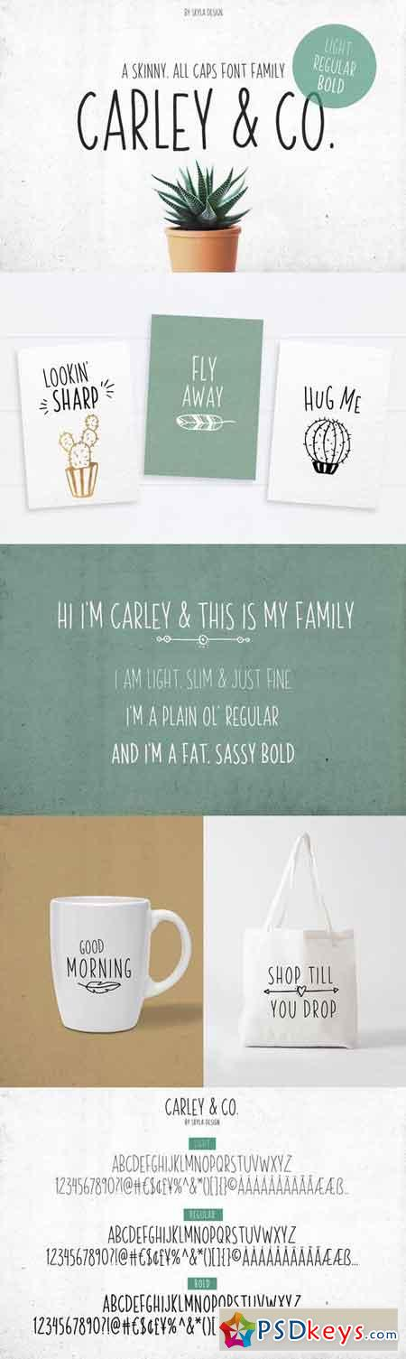 Skinny Font family Carley & Co. 1540972