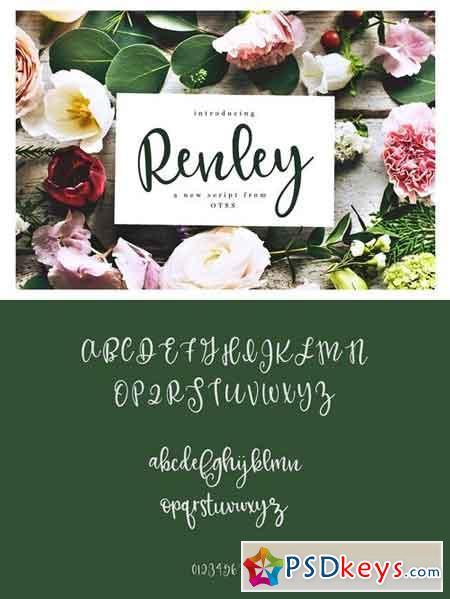 Renley - An Everyday Script 1965286