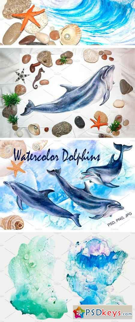 Watercolor Dolphins 2316252