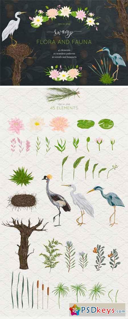 Swamp Flora and Fauna 2270825