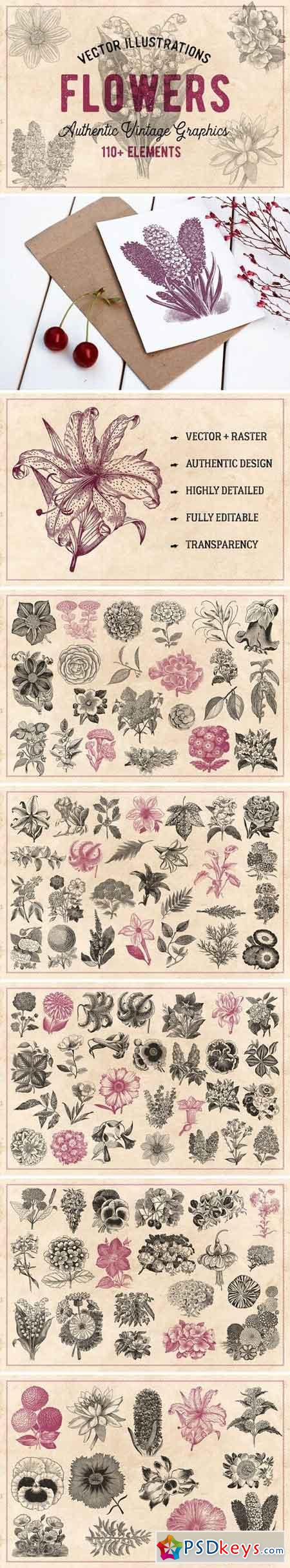 110 Vintage Flowers & Plants Vector 1441016