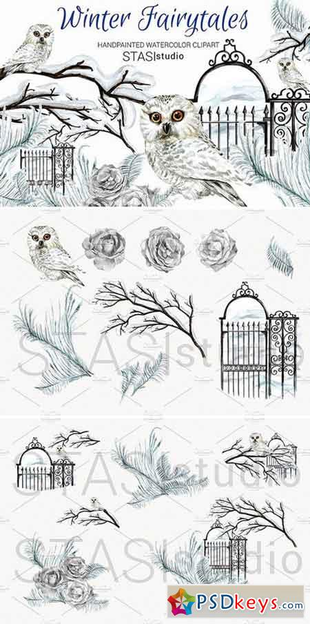 Watercolor White Owl Clipart 1590332