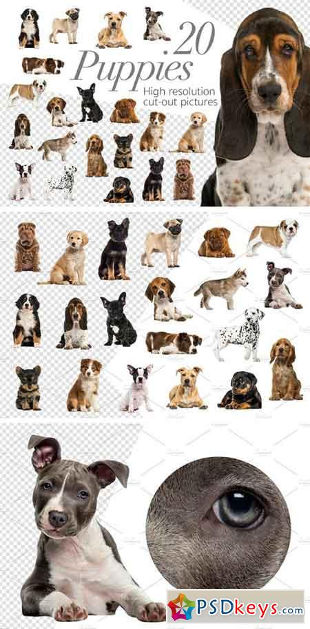 20 Puppies - Cut-out Pictures 2261995