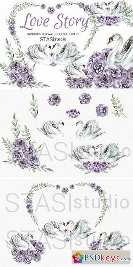 Watercolor White Swan Clipart 1590450