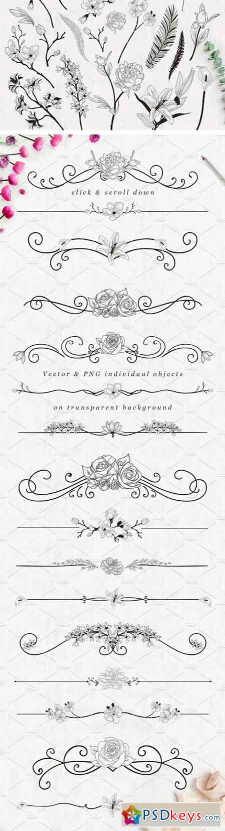 Flourish Text Dividers + Bonus 2337255