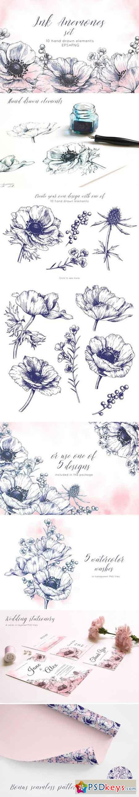 Ink anemone flowers set 2356141