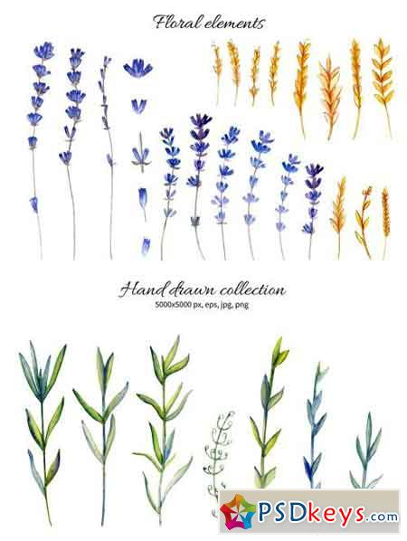 Watercolor Lavender Collection 1577615