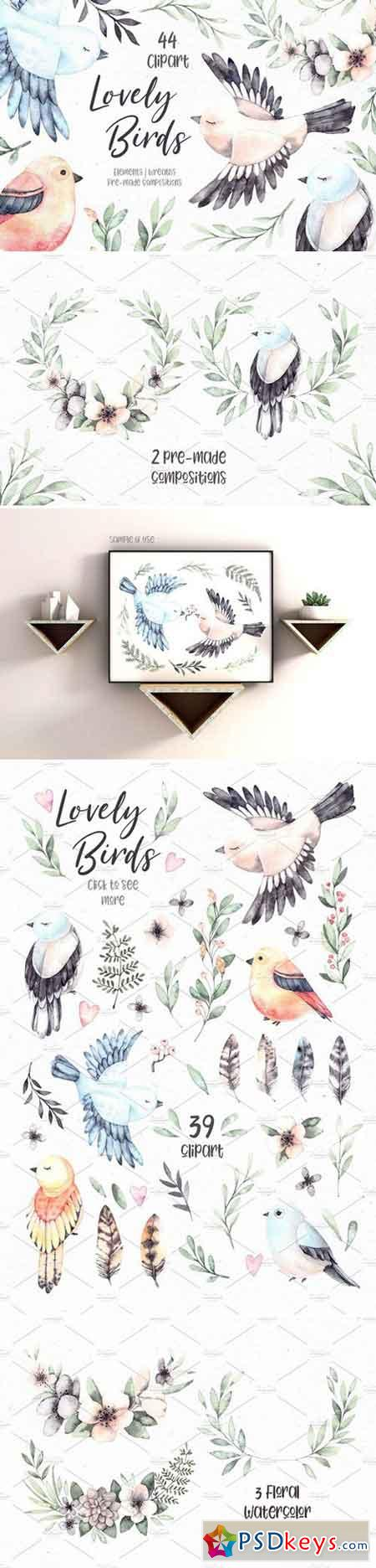 Lovely Birds Watercolor set 2357190