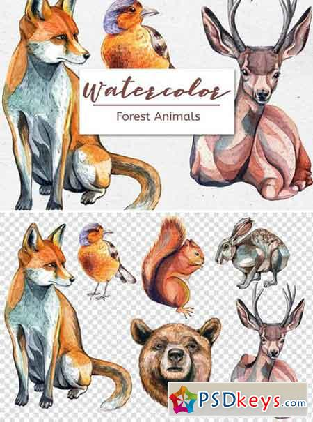 Watercolor Forest Animals – Set of 6 2357035
