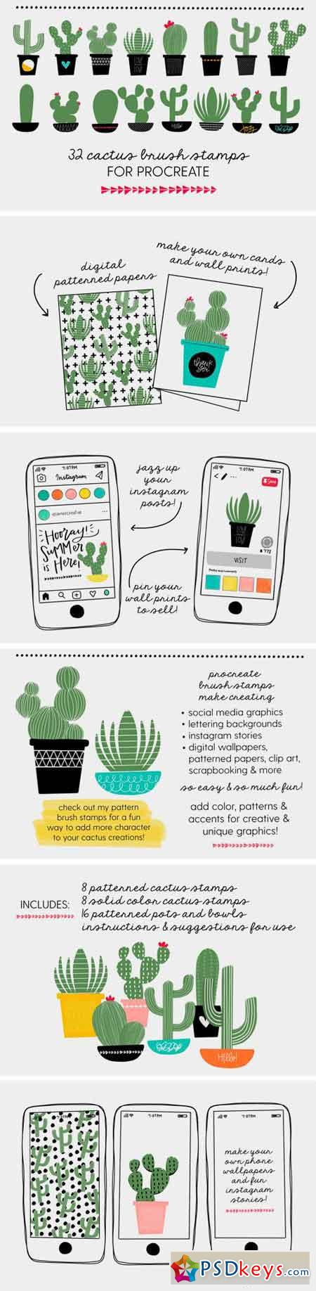 Cactus Brush Stamps for Procreate 2393324