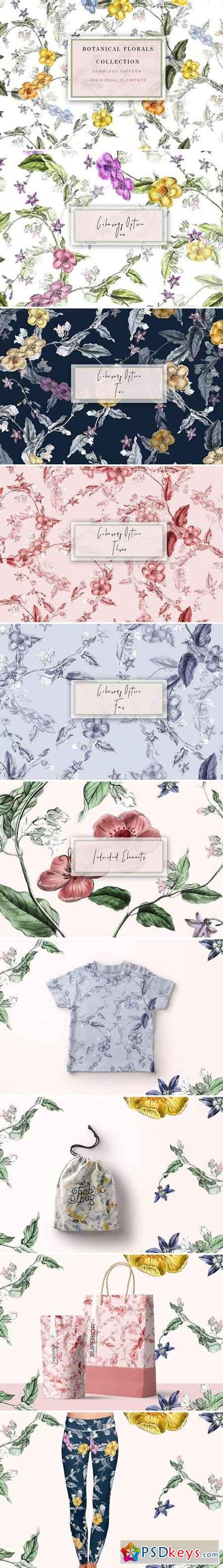 Botanical Flowers Collection 2356142