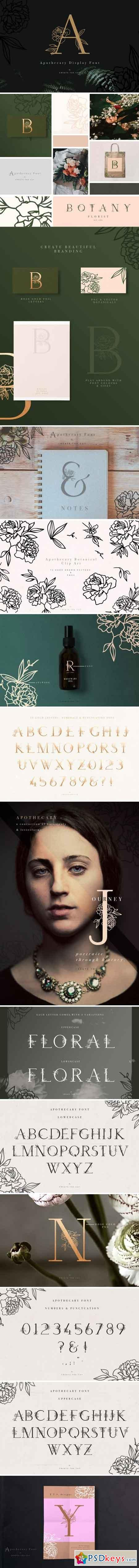 Apothecary Display Font 2154554