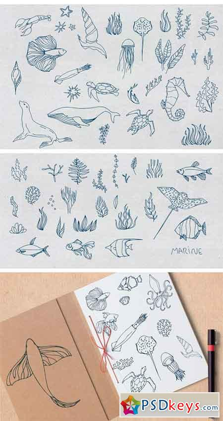 Vector Sea Creatures 2346724