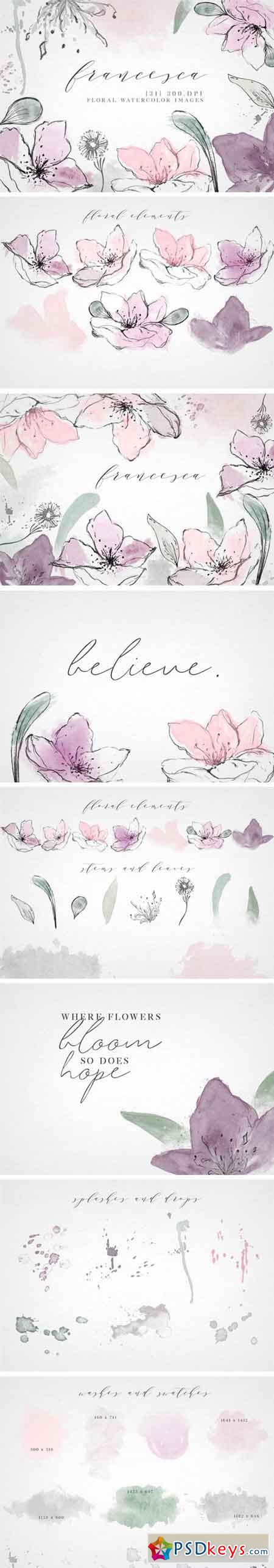 Watercolor Floral Clip Art Elements 2338264