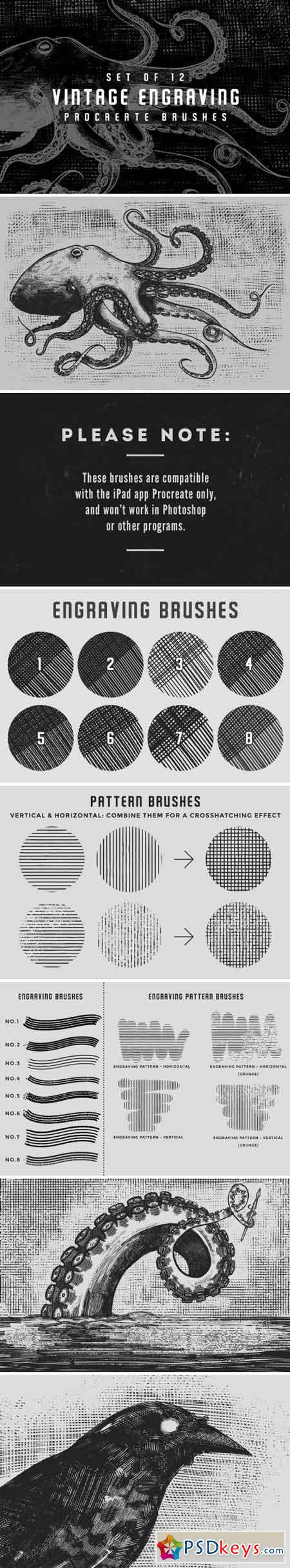 Vintage engraving Procreate brushes 1579224