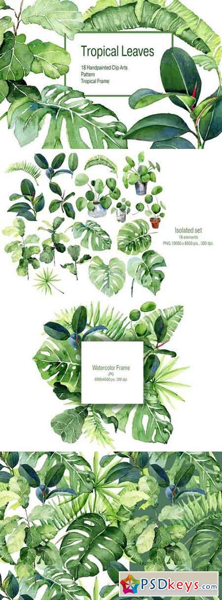 Tropical Leaves Watercolor Clipart 2400530