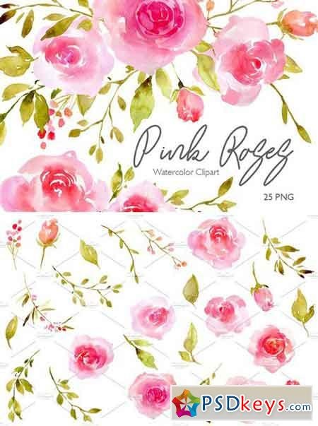 Pink Watercolor Flowers Roses PNG 2430893