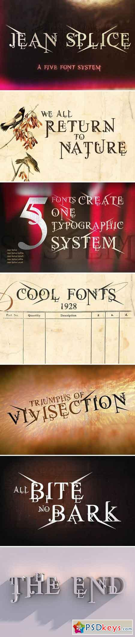 Jean Splice Display Fonts 1589859