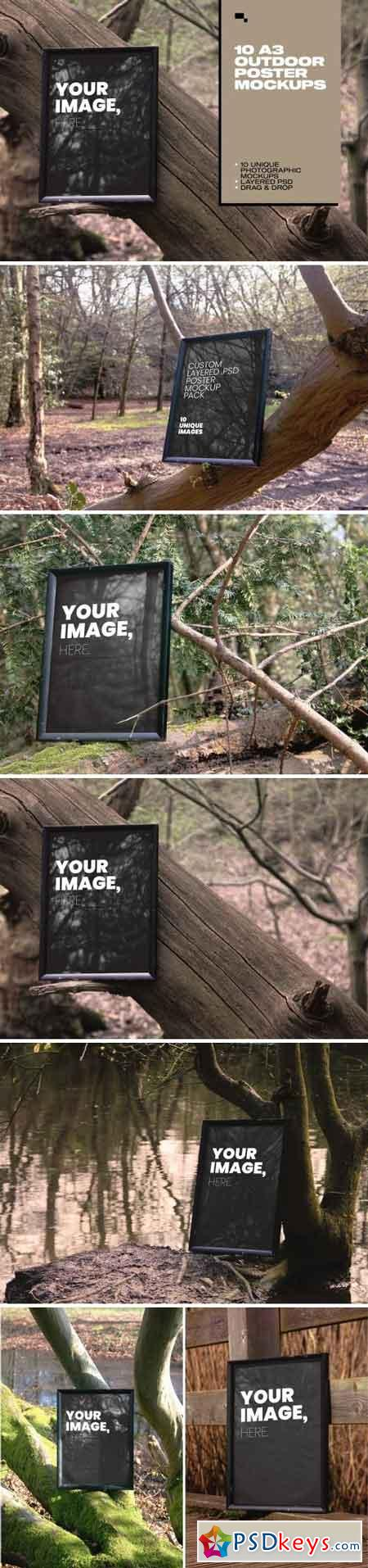 Forest Frames - 10 Unique Mockups 2464064