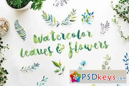 21 Watercolor Leaves & Flowers