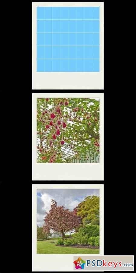 Instant photo frame Mockup