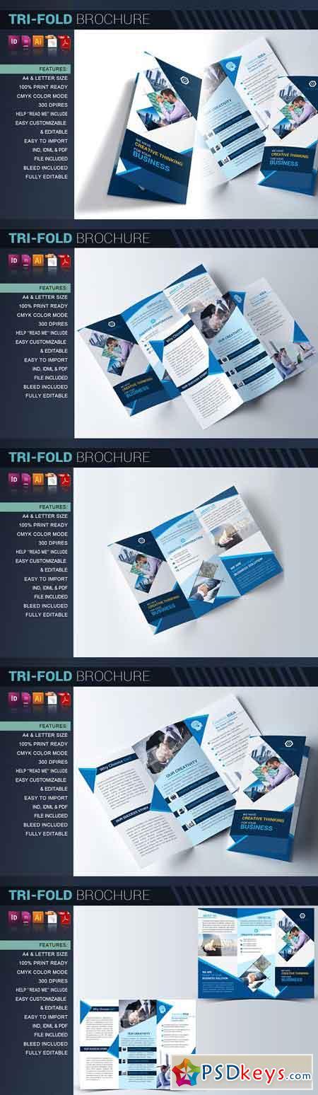 Tri-fold Brochure 2508312