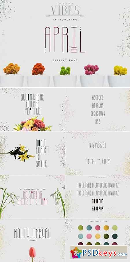[Spring Vibes] April Display Font 2428538