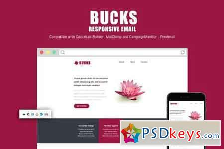 Bucks Responsive Email Template 2158915