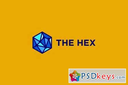 The Hex - Hexagon and Network Logo