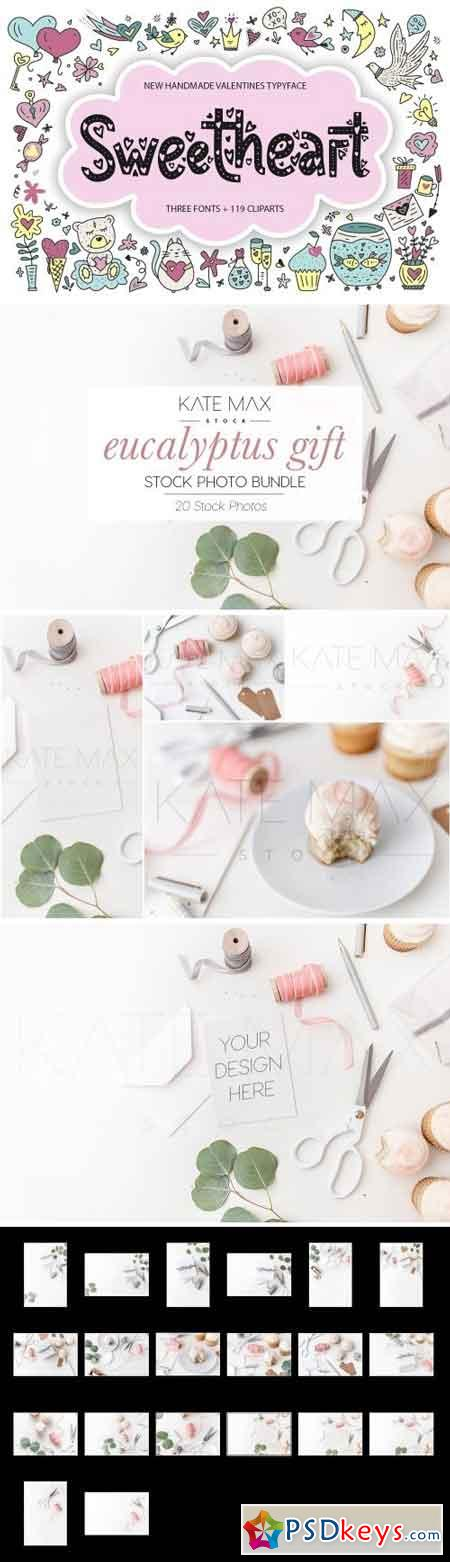 Eucalyptus Gift Stock Photo Bundle 2161007