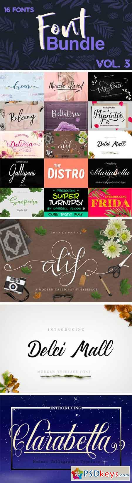 16 Premium Fonts Bundle Vol. 3
