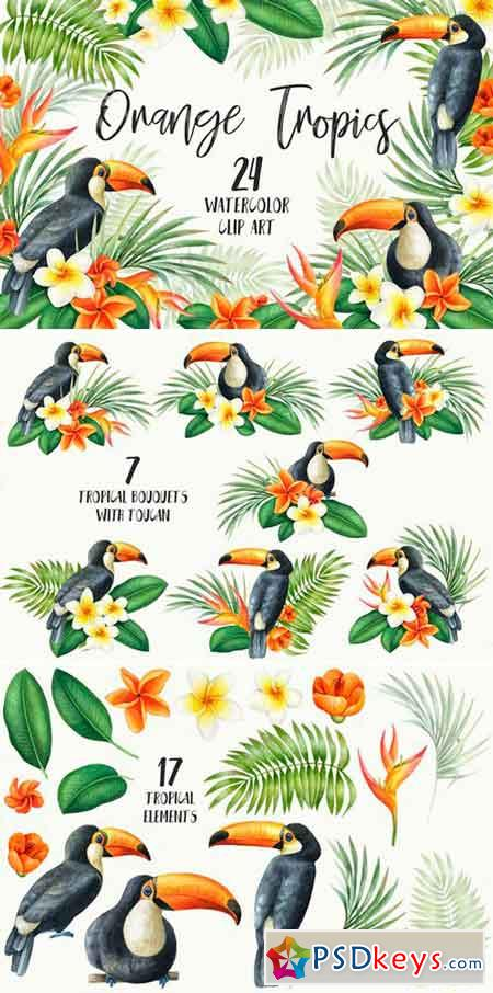 Watercolor Orange Tropics Toucan 2486518