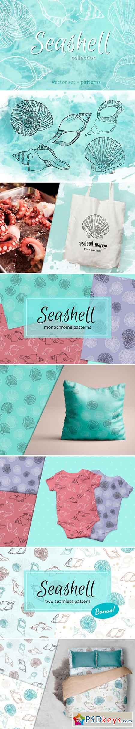 Seashell collection of patterns 2487066