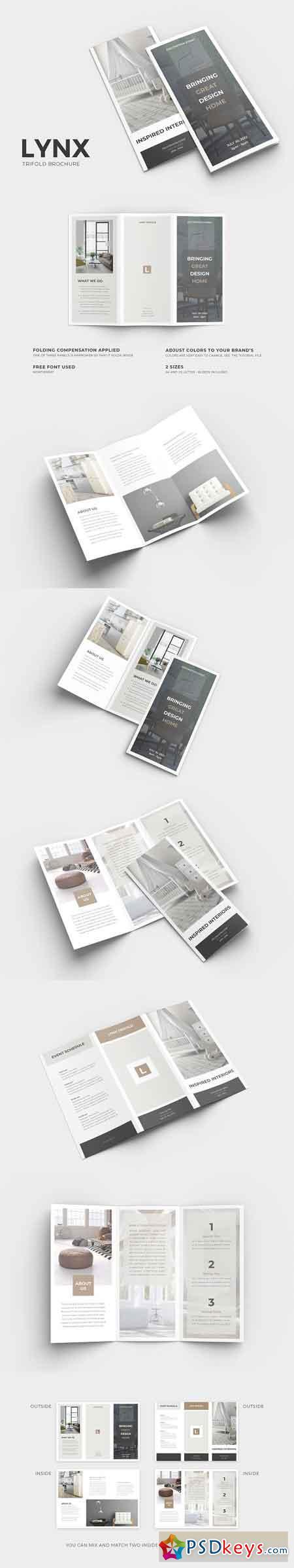 Lynx Trifold Brochure 2581374