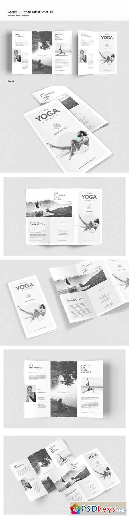 Yoga Trifold Brochure 2583437