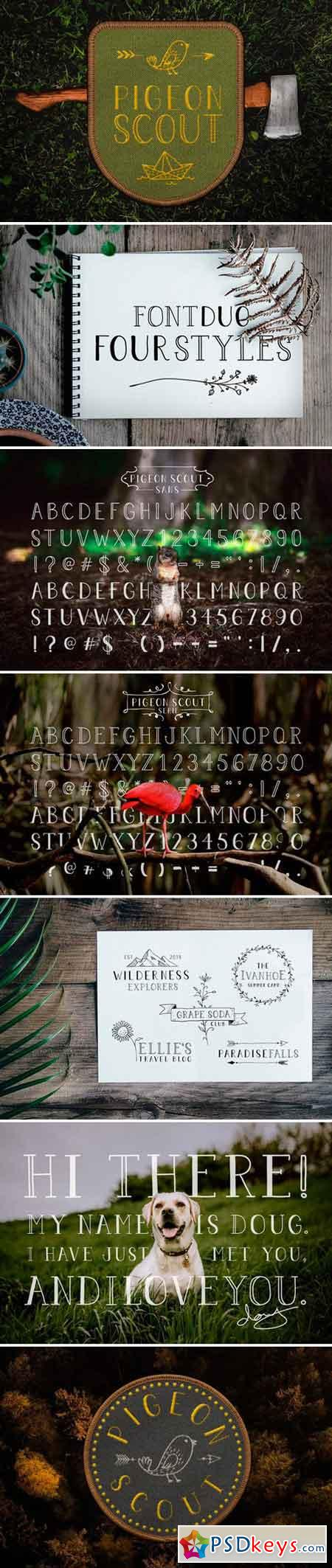Pigeon Scout Font Collection 2520275