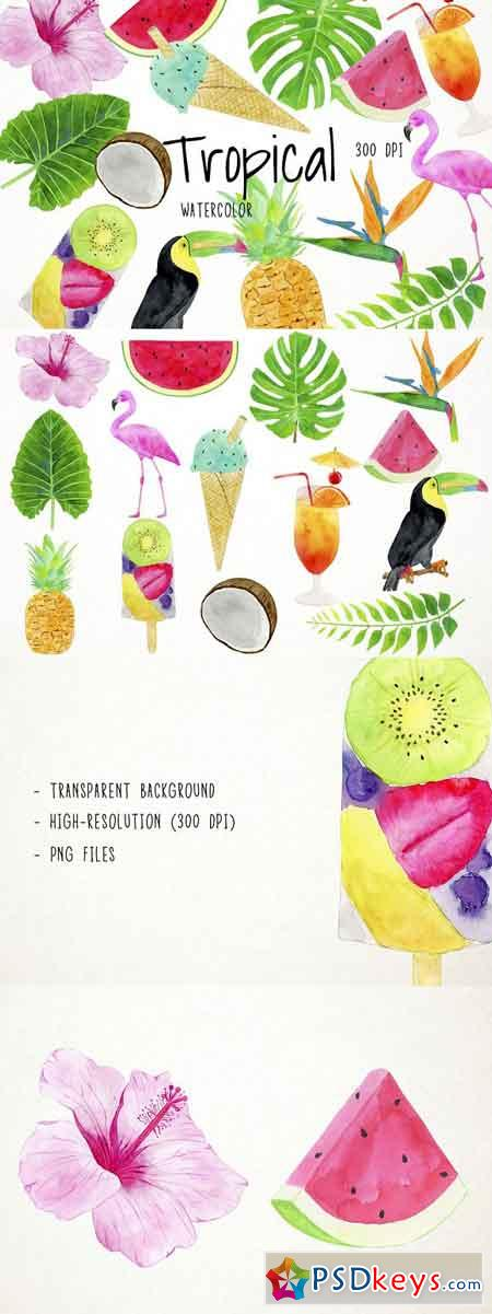 Watercolor Tropical Clipart 2487022