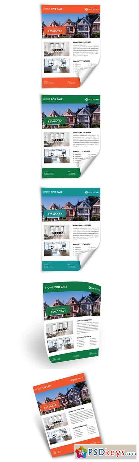 Real Estate Flyer 2581423