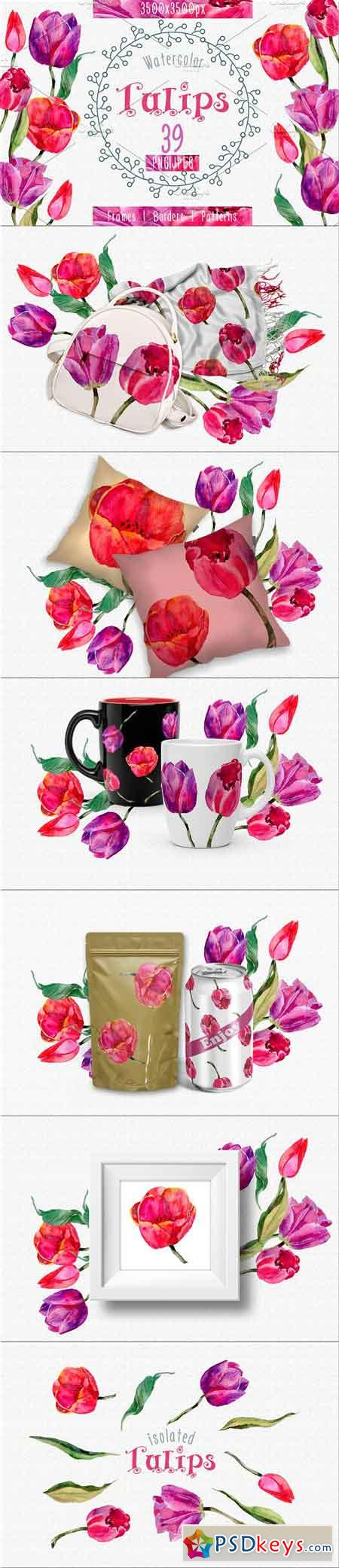 Tulips PNG watercolor flower set 2392711