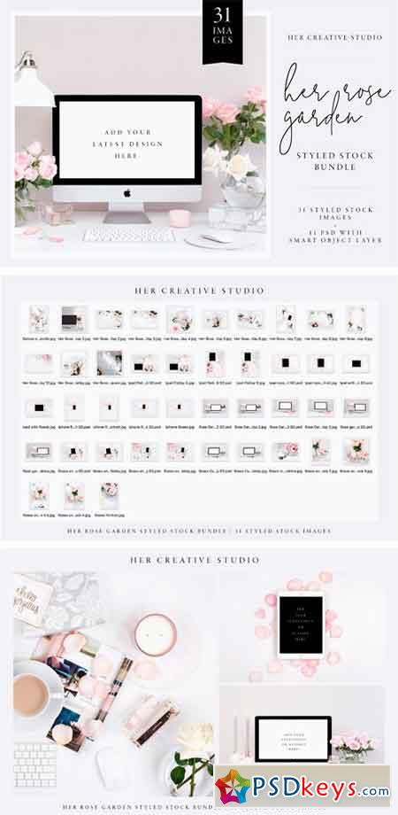Her Rose Garden Styled Stock Bundle 2511638