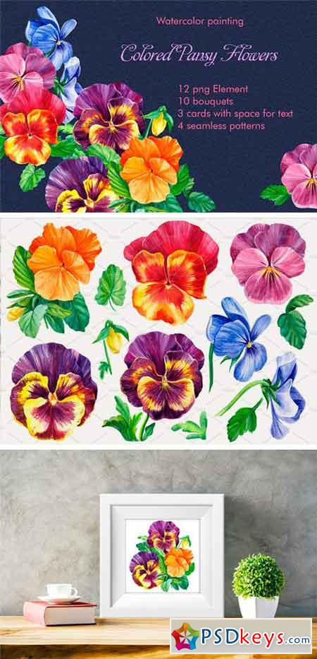 Colored Pansies Flowers 2511868
