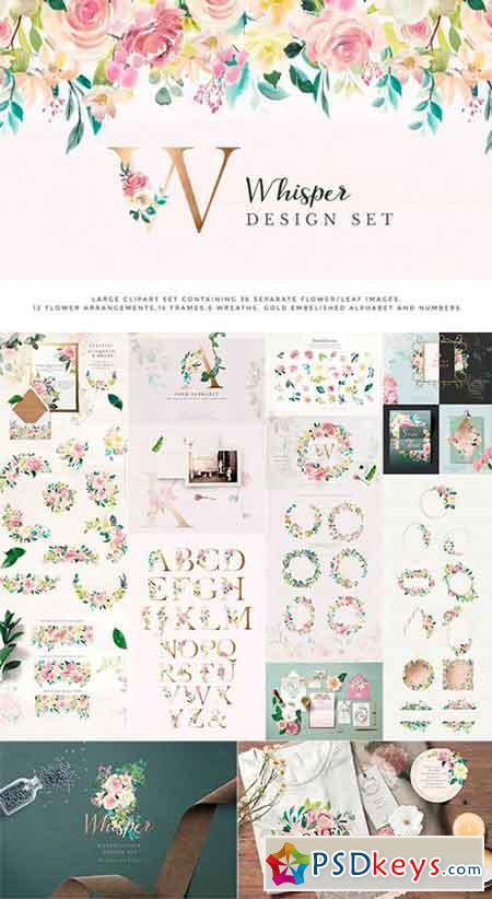 Watercolor Design Project - Whisper 2492472